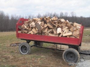 Load of wood for Josh
