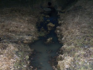 Muddy water in the stream