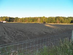 One of the fields plowed for Speltz