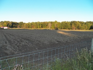 One of the fields plowed for Speltz