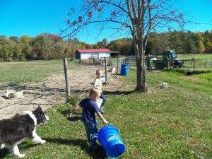 Jackson and Xavier, helping Pa-Pa. Cinch keeping a watchful eye.