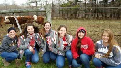 Kids n cows