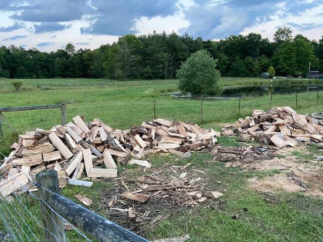 woodsplit20201