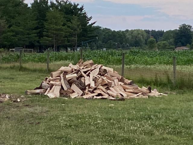 woodsplit20202